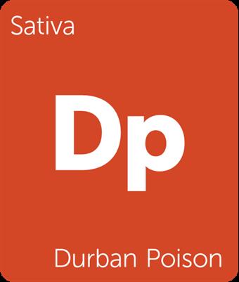 Leafly Durban Poison sativa cannabis strain tile