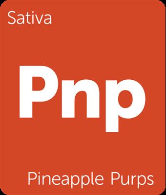 Leafly Pineapple Purps sativa cannabis strain tile