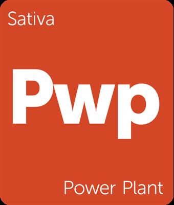 Leafly Power Plant sativa cannabis strain tile