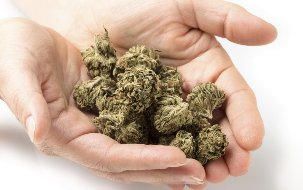 Tactile cues for identifying old or bad cannabis
