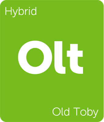 Leafly Old Toby cannabis strain