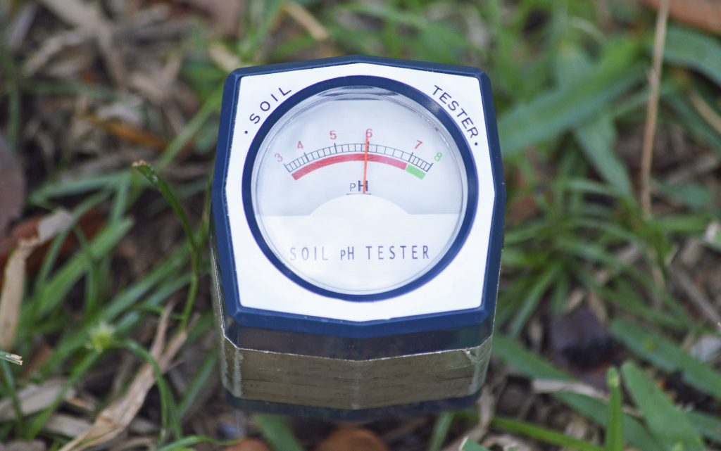 Use a pH Soil Test Meter for cannabis plants