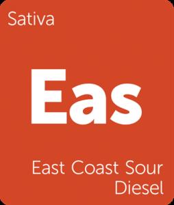 Leafly East Coast Sour Diesel sativa cannabis strain