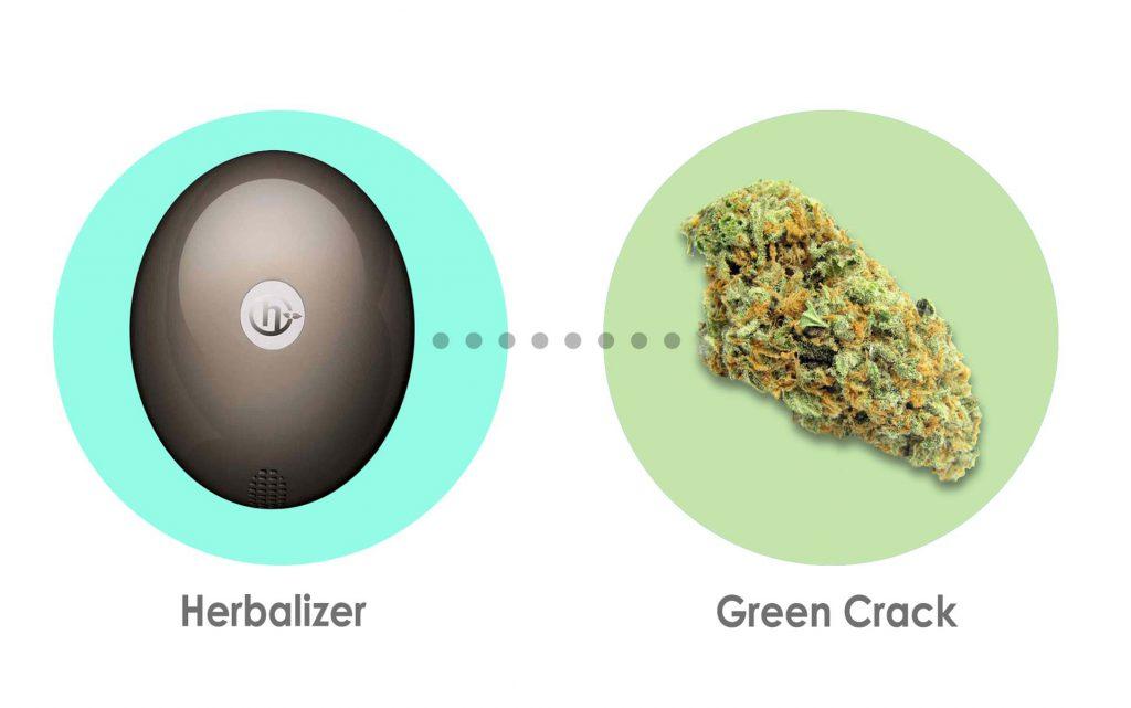 herbalizer-web