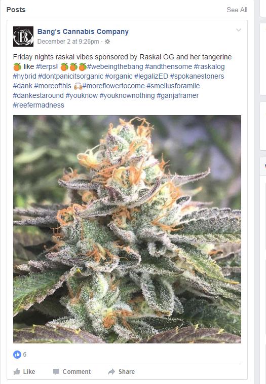 bangs-cannabis-facebook-post