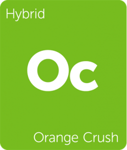 Leafly Orange Crush hybrid cannabis strain