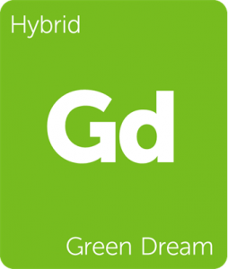 Leafly Green Dream hybrid cannabis strain