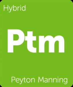 Leafly Peyton Manning hybrid cannabis strain tile