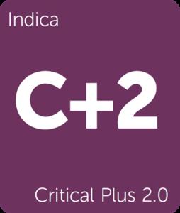 Leafly Critical Plus 2.0 indica cannabis strain tile