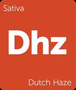 Leafly Dutch Haze cannabis strain tile