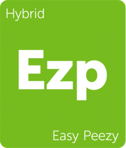 Easy Peezy Leafly cannabis strain tile
