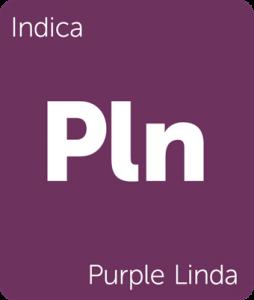 Purple Linda Leafly cannabis strain tile