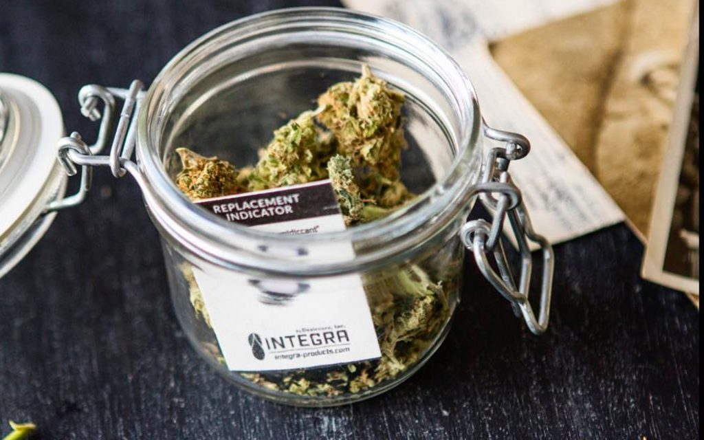 cannabis-mold-1