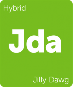 Jda Jilly Dawg Leafly cannabis strain tile