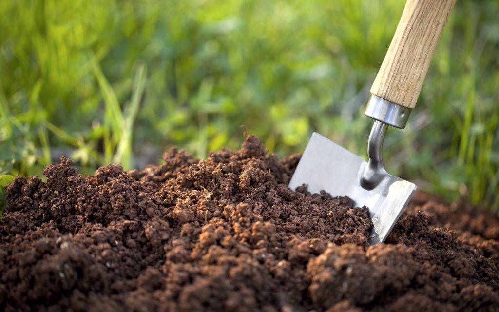 How to make organic soil for your weed