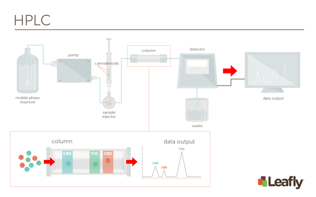 General Overview of HPLC Process