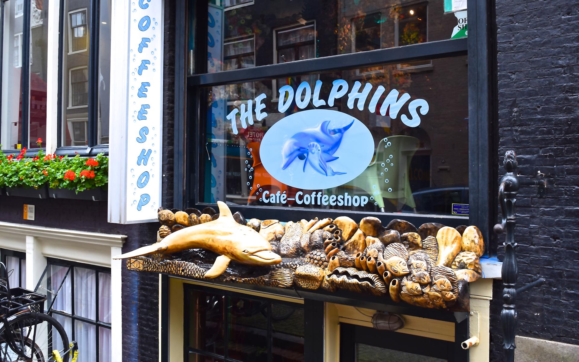 Amsterdam Cannabis Coffeeshop: The Dolphins