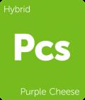 Leafly Purple Cheese hybrid cannabis strain