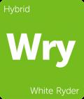 Leafly White Ryder hybrid cannabis strain