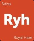 Leafly Royal Haze sativa cannabis strain