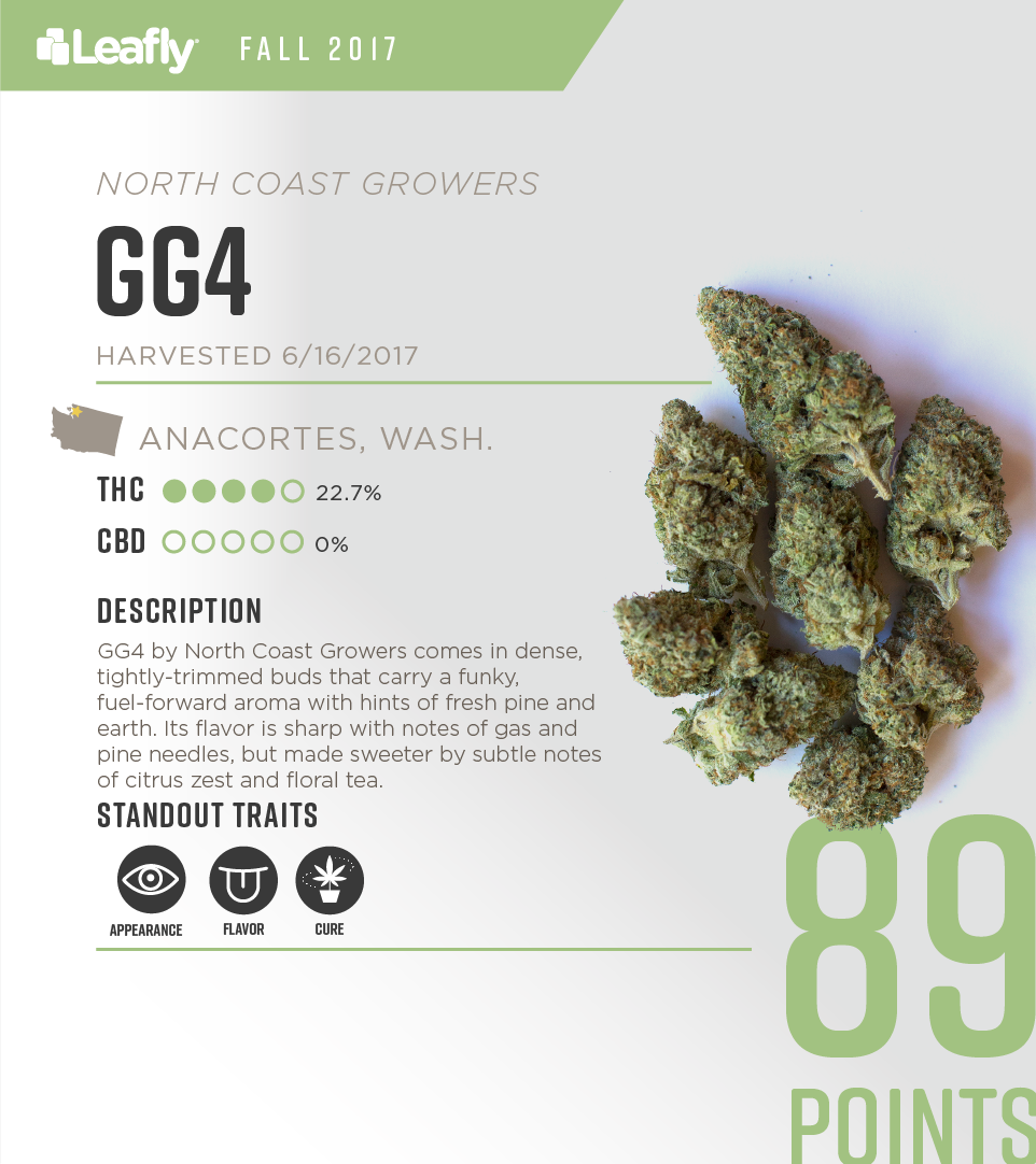 Characteristics of North Coast Grower's GG4 cannabis strain, the #6-rated THC-dominant strain in Washington state for fall 2017
