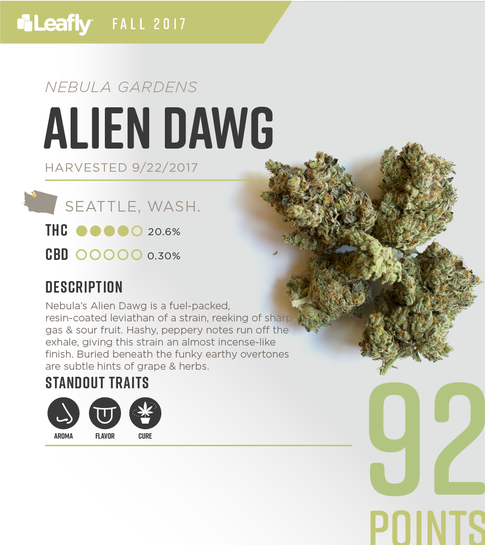 Characteristics of Nebula Gardens' Alien Dawg cannabis strain, the #4-rated THC-dominant strain in Washington state for fall 2017