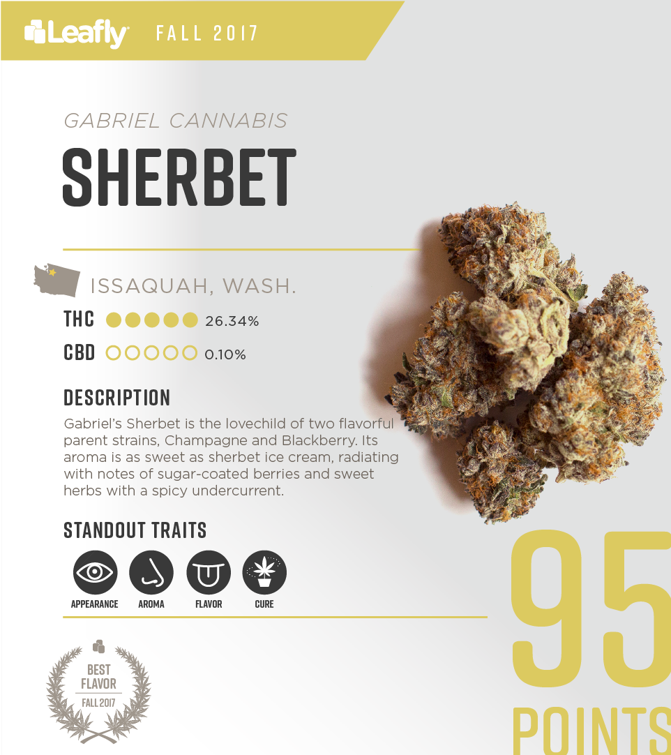 Characteristics of Gabriel Cannabis' Sherbet cannabis strain, the #2-rated THC-dominant strain in Washington state for fall 2017