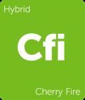 Cherry Fire Leafly cannabis strain tile