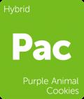 Purple Animal Cookies Leafly cannabis strain tile