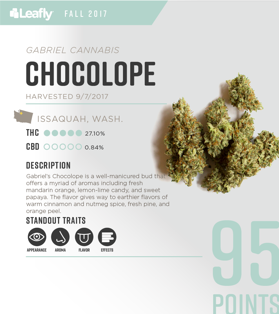 Gabriel Cannabis' Chocolope: the 4th-best-tasting strain in Washington state for fall 2017