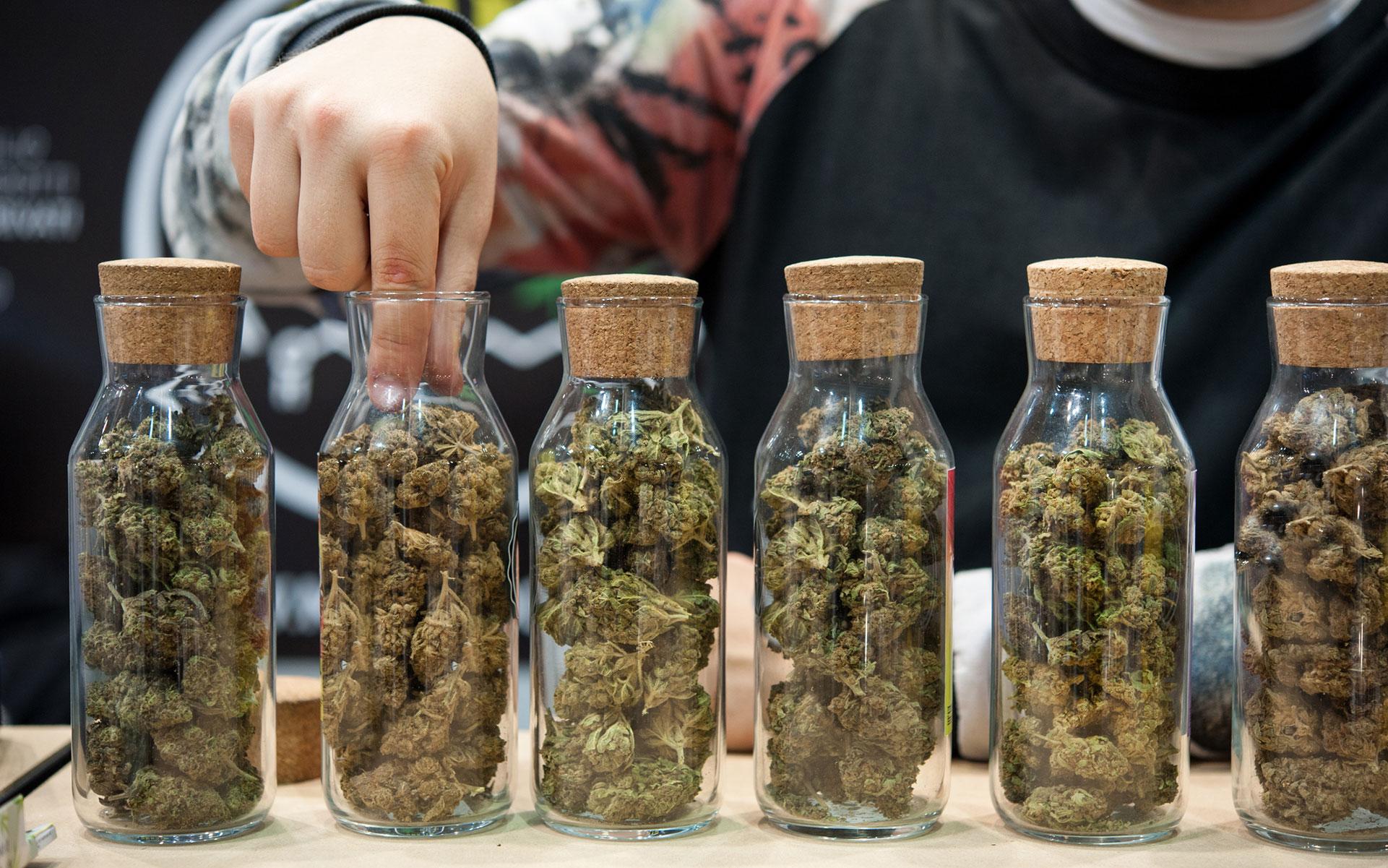 Qualities of Good Cannabis Dispensary