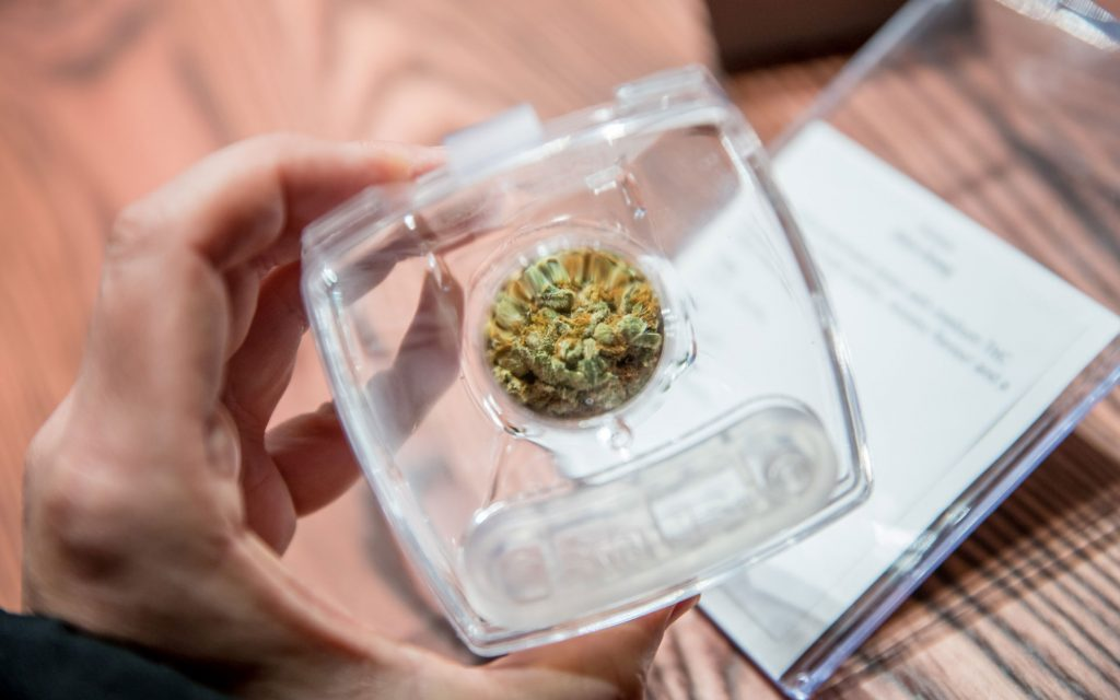 Ganjika House cannabis store dispensary