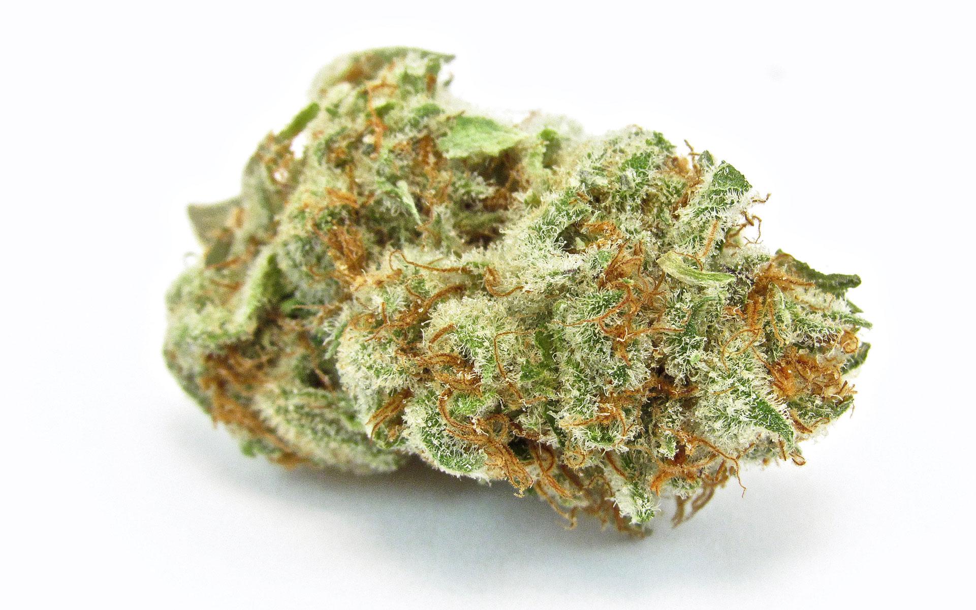 Best new marijuana strains - Banana Punch