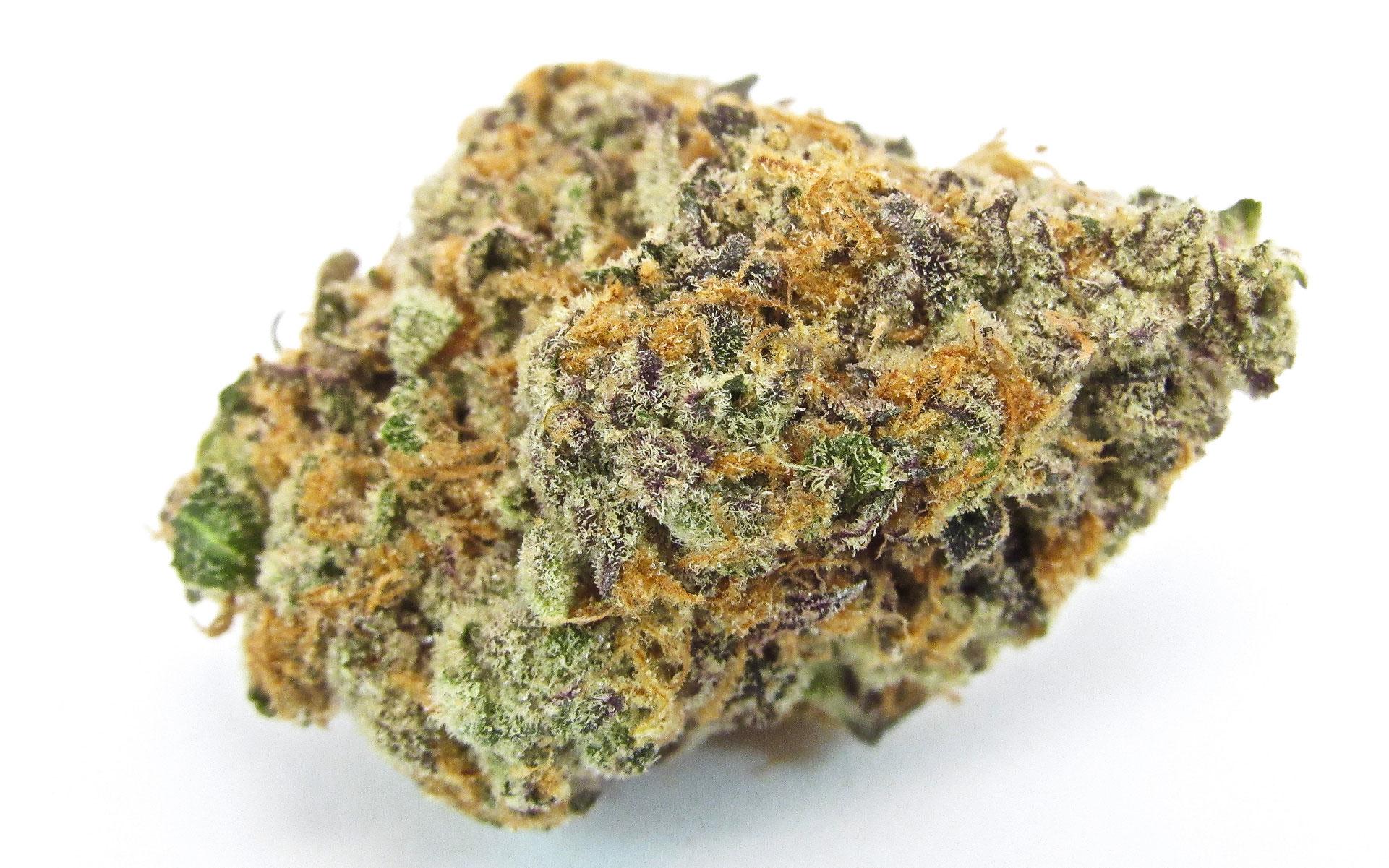 Best new marijuana strains - Sundae Driver