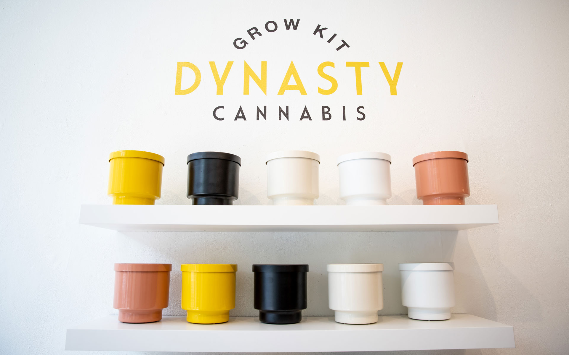 Dynasty Cannabis