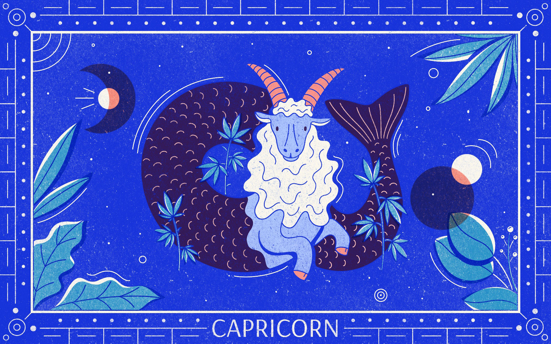 CAPRICORN web Gillian Levine - Star signs and cannabis strains: July 2020 horoscopes