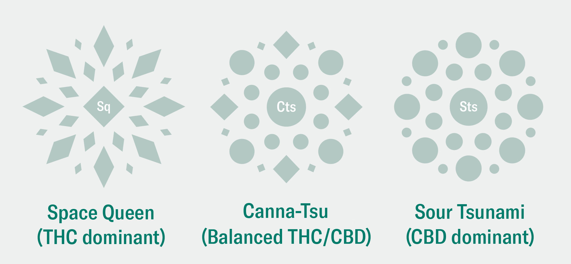 Stevo Article Explainer Strain Comparison
