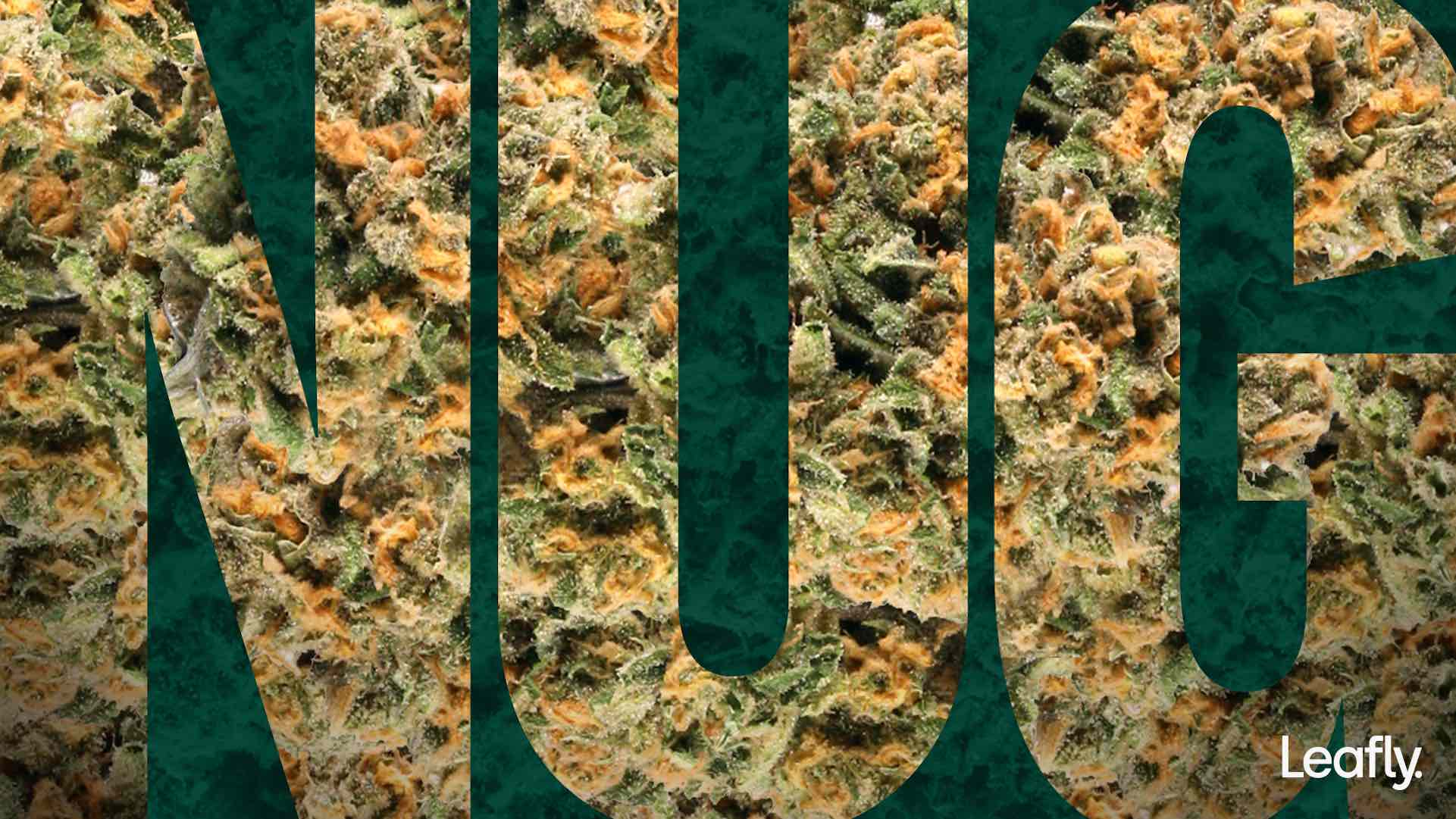 marijuana zoom background leafly