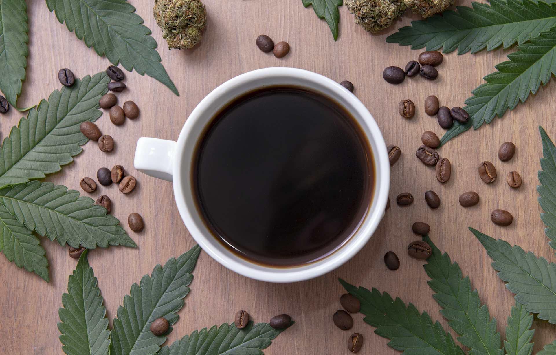 cannabis coffee