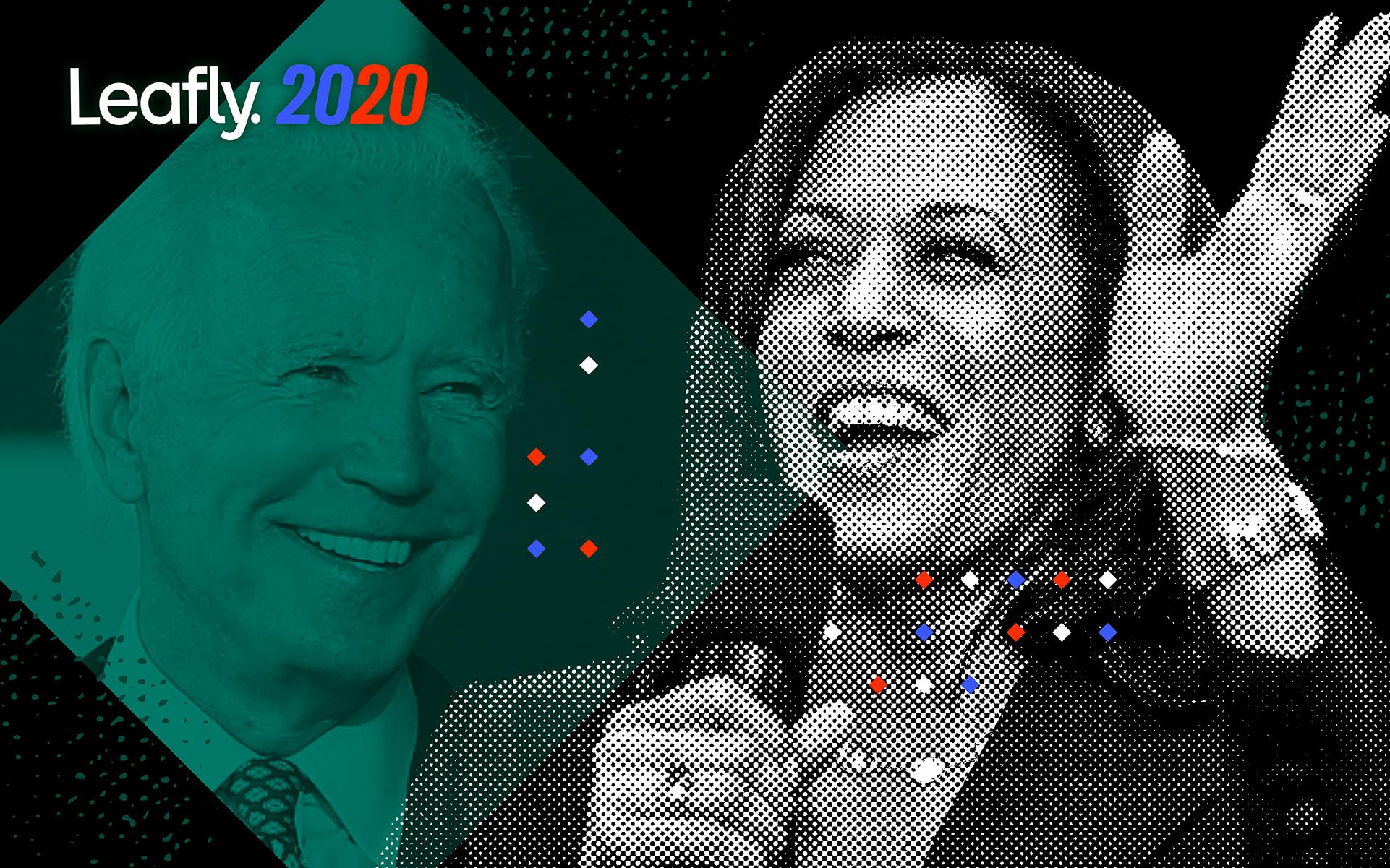 BidenVP v2 Ed 1921x1201%401x - Cannabis leaders react to Biden's choice of Kamala Harris: Will she help or hurt marijuana legalization?