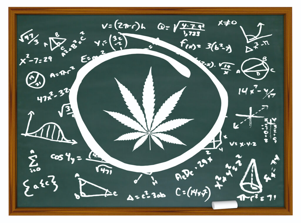 Illustration of marijuana and mathematic formulas on chalkboard