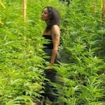 Veronica Castillo's Bio Image