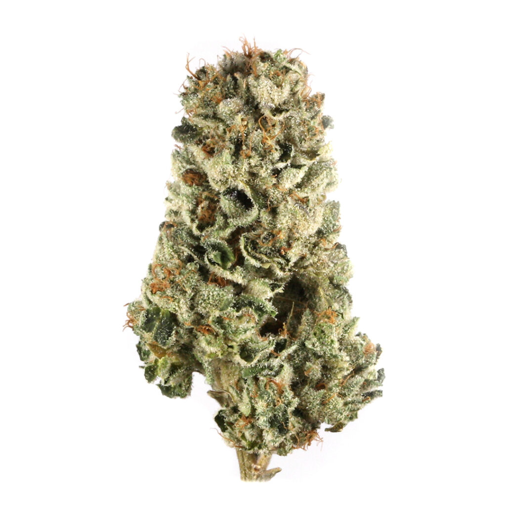 cherry pie 1024x1024 - Strains to support parents through back-to-school season