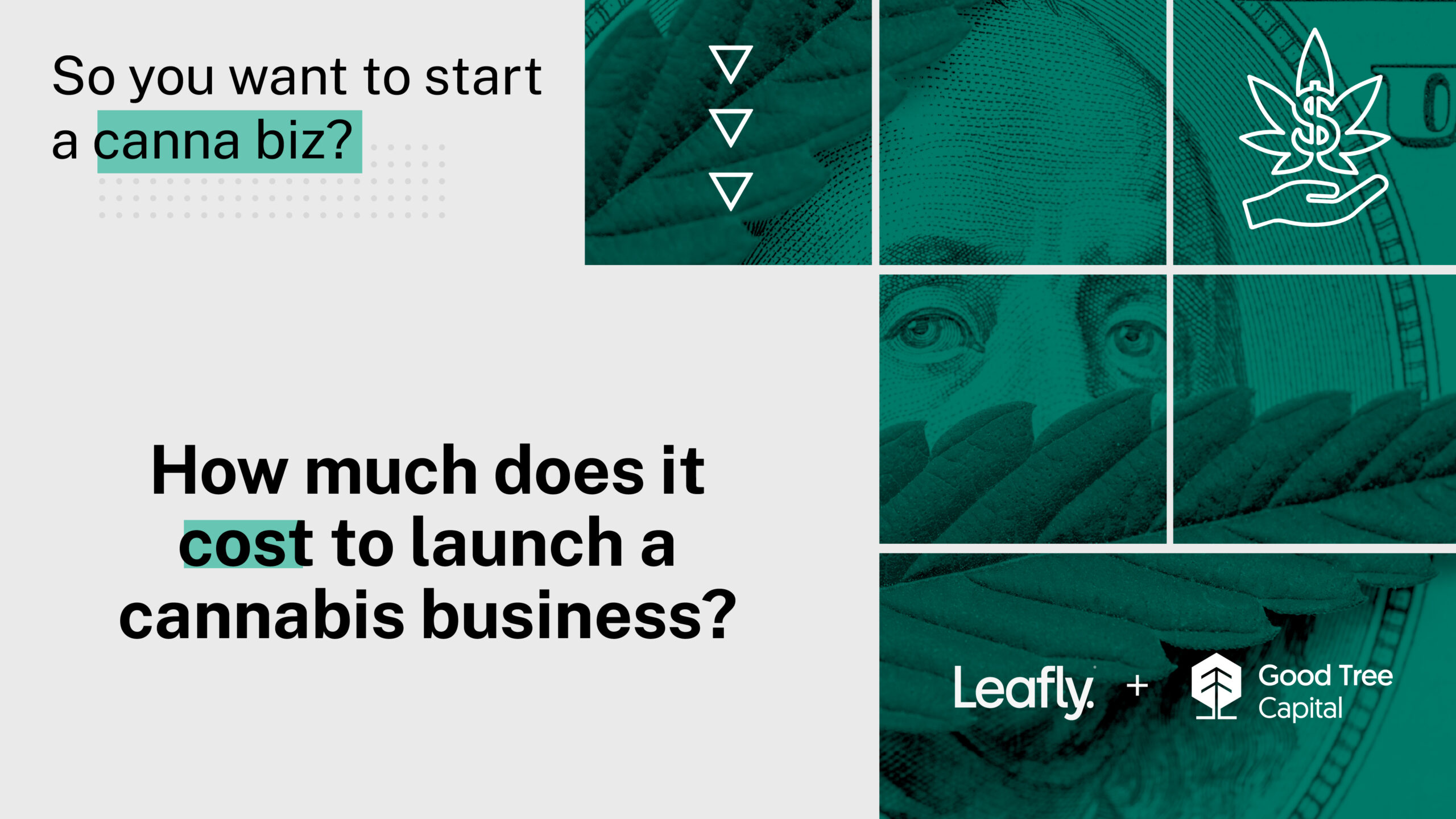 How much does it cost to launch a cannabis business?