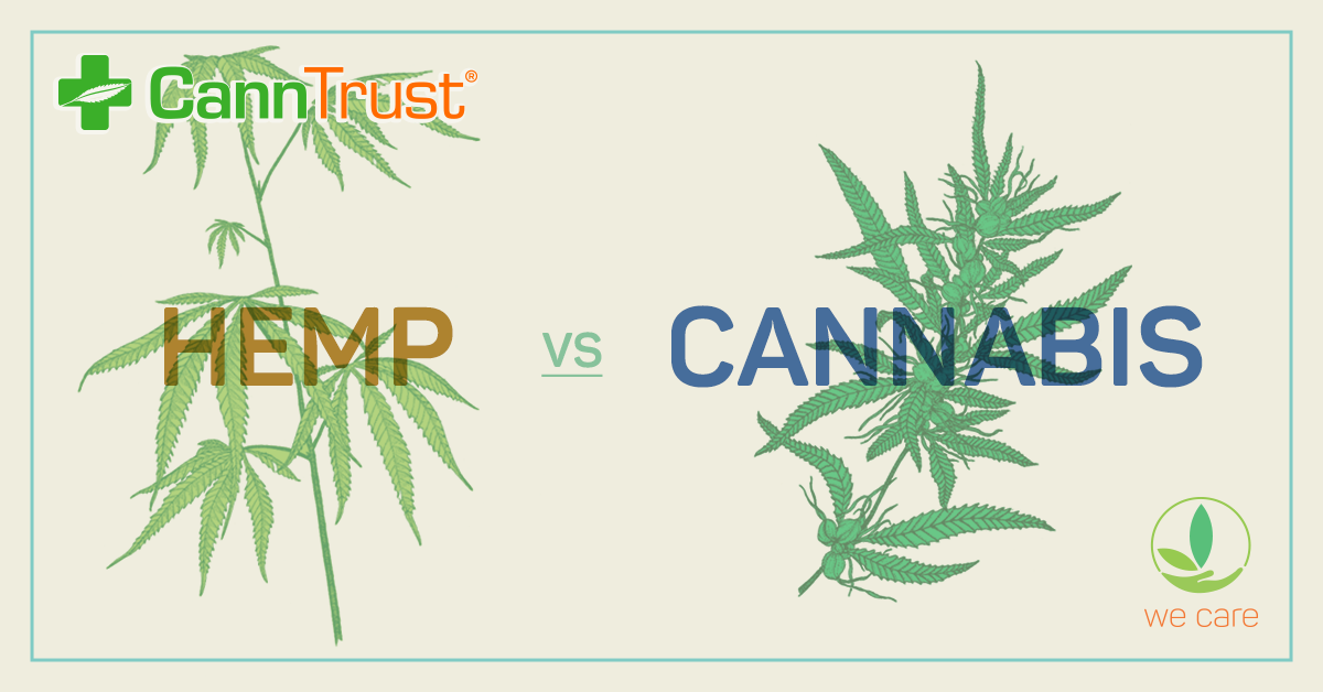 Charges laid in CannTrust scandal that rocked the Canadian cannabis industry